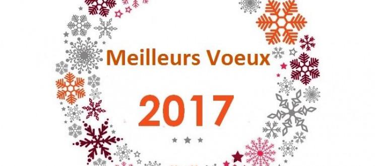 Le Cedap vous souhaite une belle année 2017 !